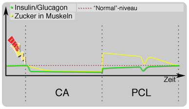 zucker insulin glucagon